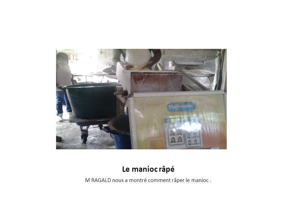 visite de la fabrique de manioc ppt video online t l charger. Black Bedroom Furniture Sets. Home Design Ideas