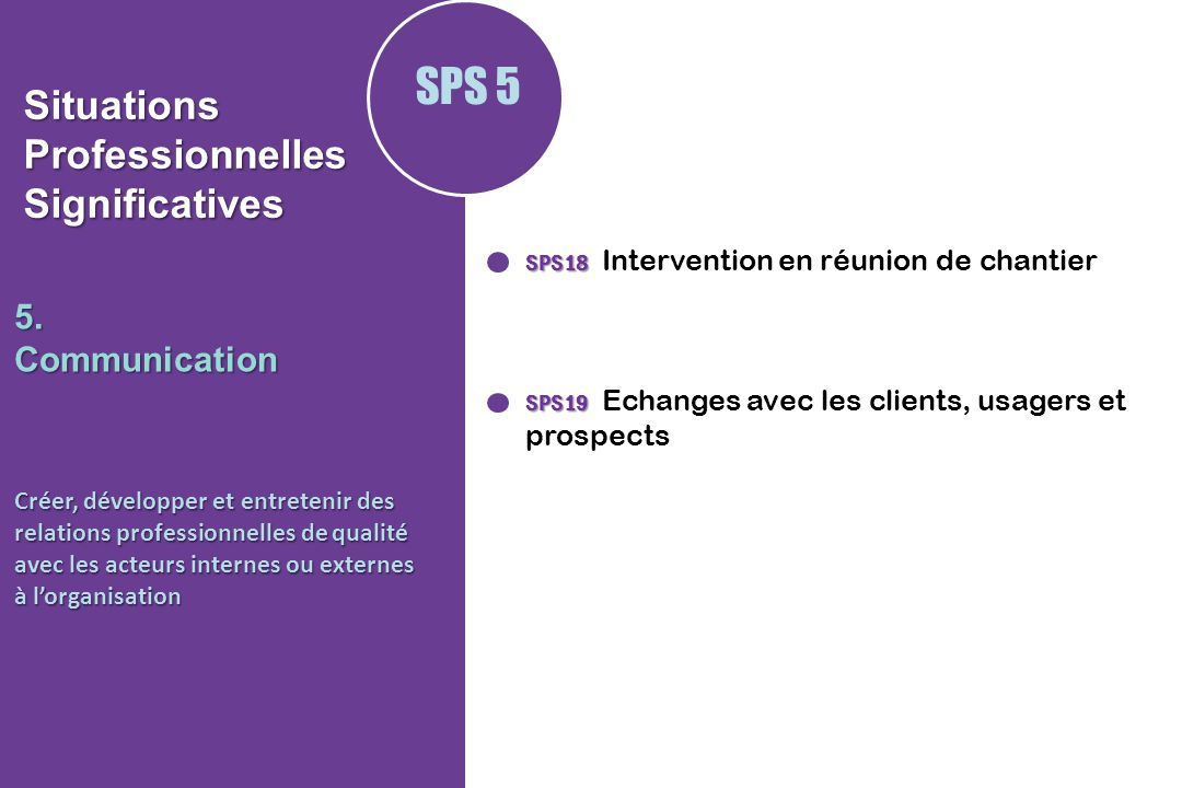 Situations Professionnelles Significatives
