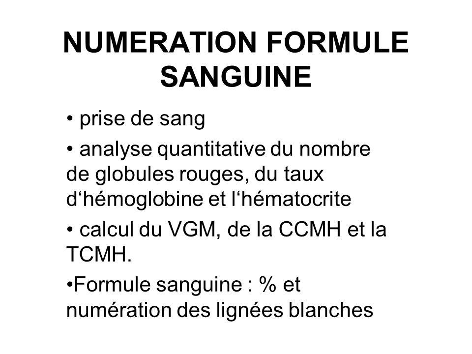 numeration formule sanguine ppt video online t l charger. Black Bedroom Furniture Sets. Home Design Ideas