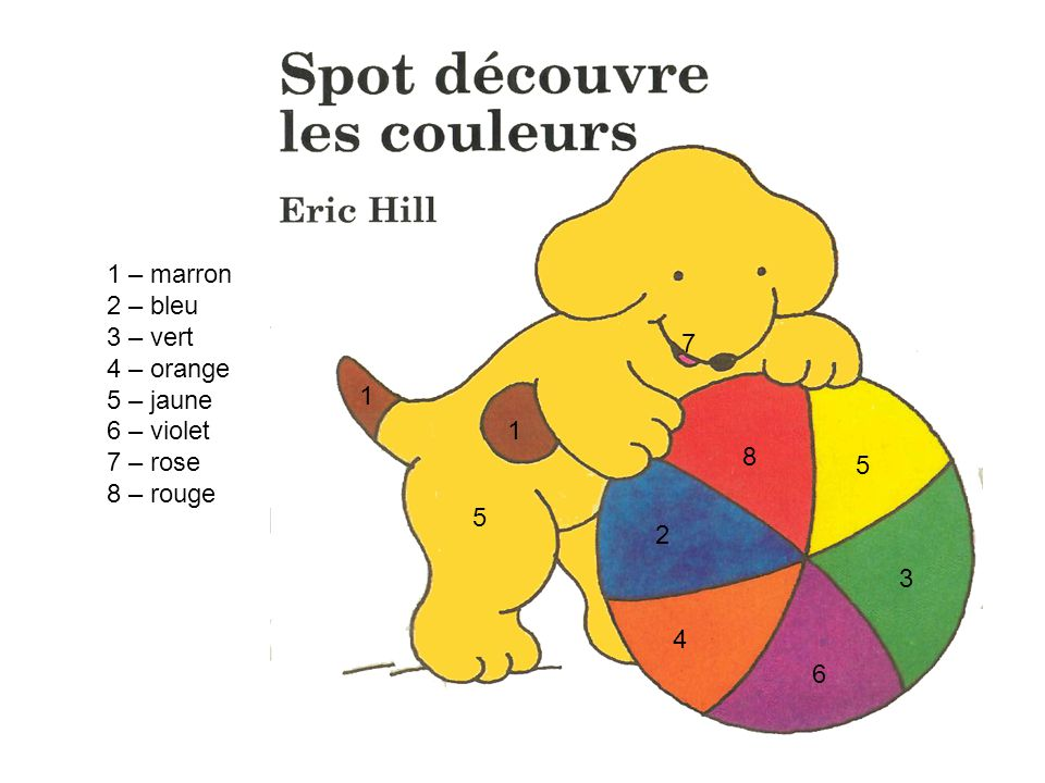 1 – marron 2 – bleu 3 – vert 4 – orange 5 – jaune 6 – violet 7 – rose 8 – rouge 7 1 1 8 5 5 2 3 4 6