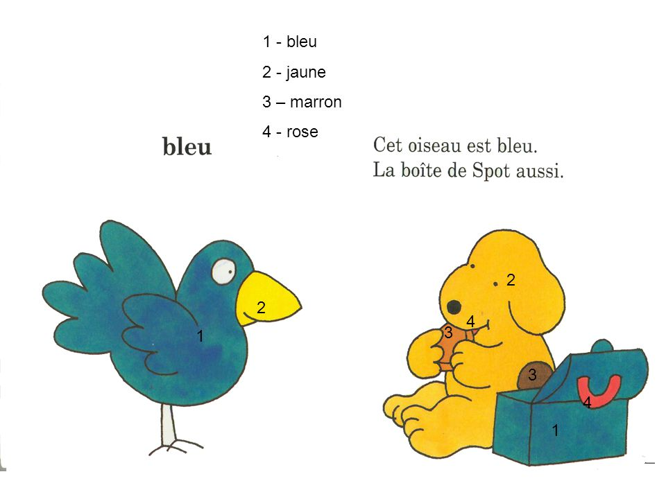 1 - bleu 2 - jaune 3 – marron 4 - rose 2 2 4 1 3 3 4 1