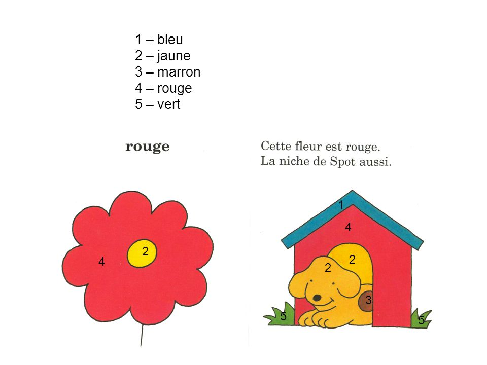 1 – bleu 2 – jaune 3 – marron 4 – rouge 5 – vert 1 4 2 4 2 2 3 5 5