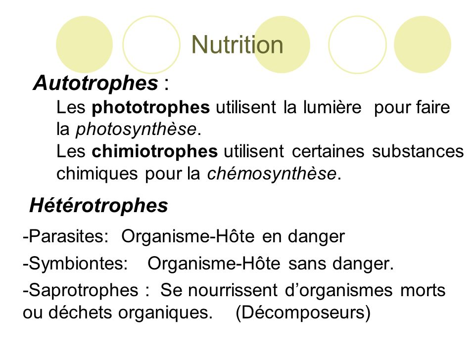 Nutrition Autotrophes : -Parasites: Organisme-Hôte en danger