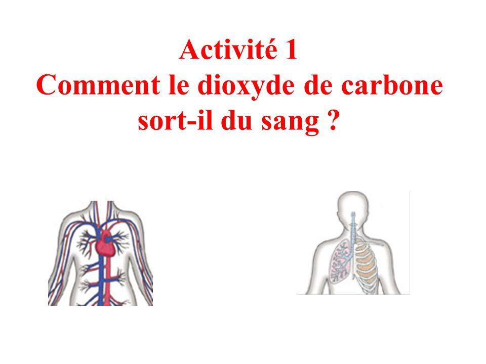Fonctionnement de l organisme et besoin en nergie ppt - Dioxyde de carbone danger ...
