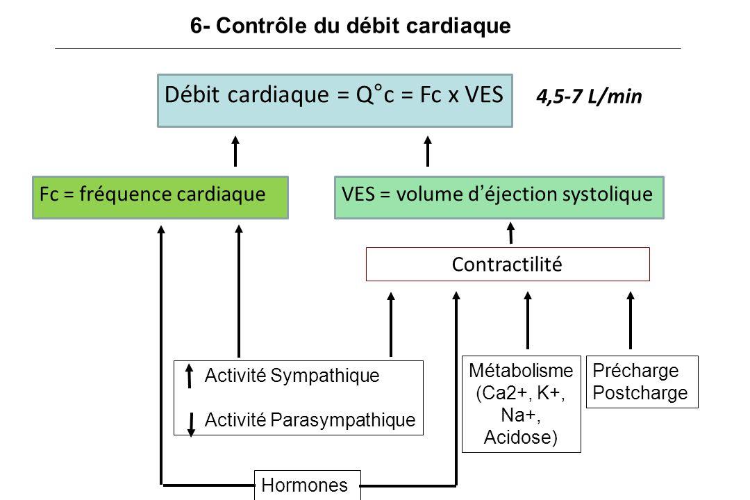 Métabolisme (Ca2+, K+, Na+, Acidose)