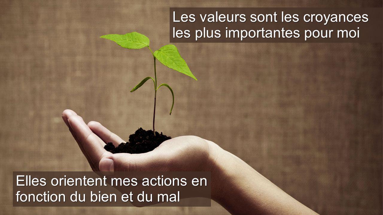 Les valeurs sont les croyances les plus importantes pour moi