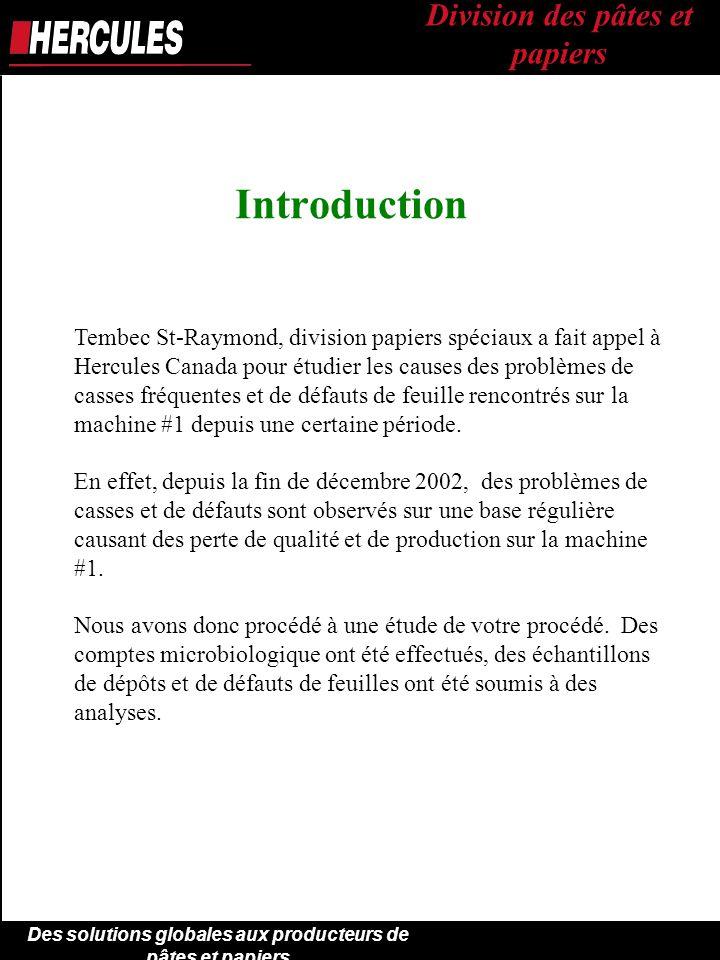 Audit Machine #1 Division des pâtes et papiers { TEMBEC Inc. - ppt ...
