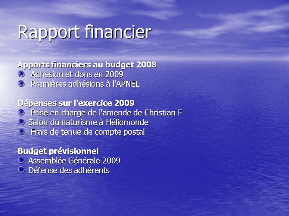 Rapport financier Apports financiers au budget 2008