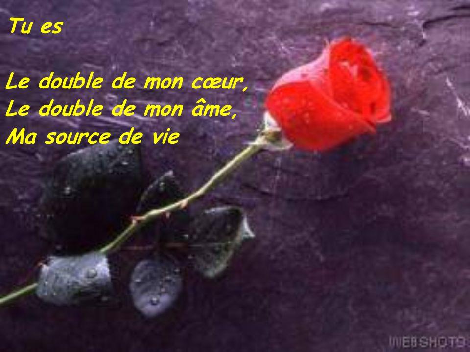 Le 21 mars 2005 pour toi mon mari ppt video online for Tu es le miroir de ma vie