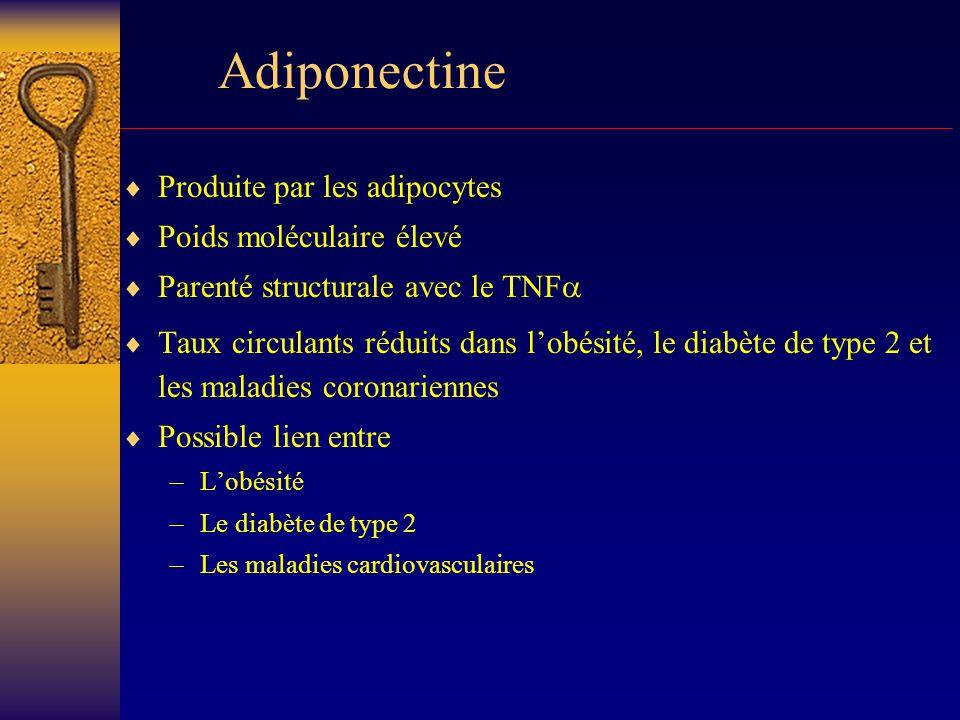 obesite et diabete type 2 pdf