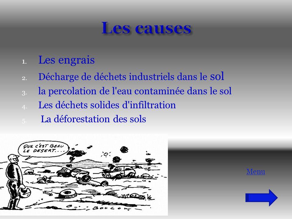 Les causes Les engrais Décharge de déchets industriels dans le sol