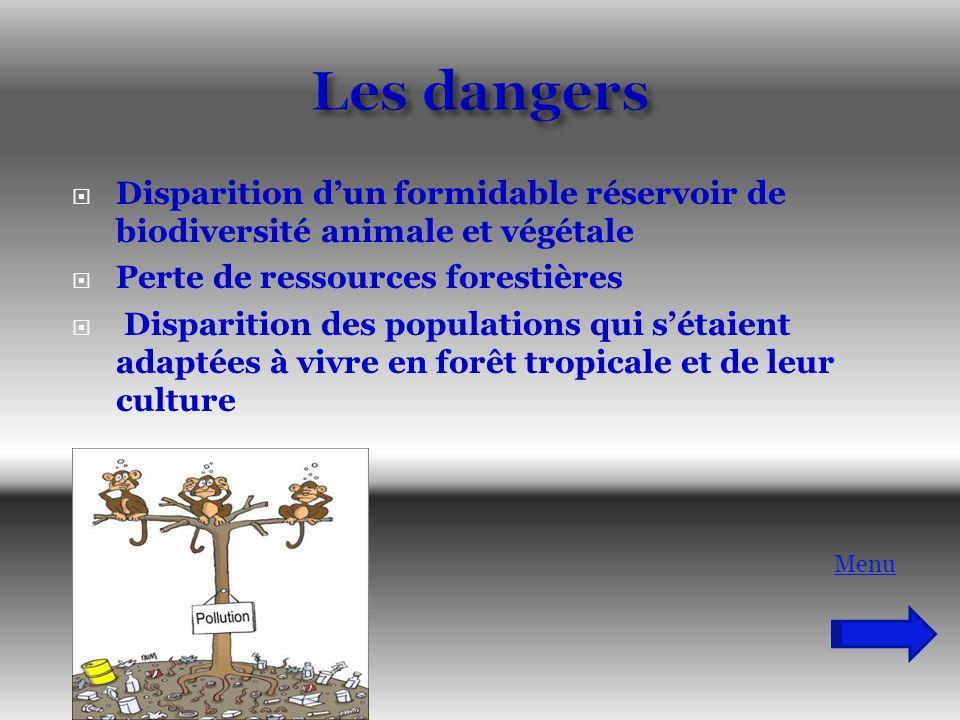 Les dangers Disparition d'un formidable réservoir de biodiversité animale et végétale. Perte de ressources forestières.