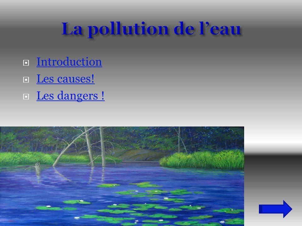 La pollution de l'eau Introduction Les causes! Les dangers !
