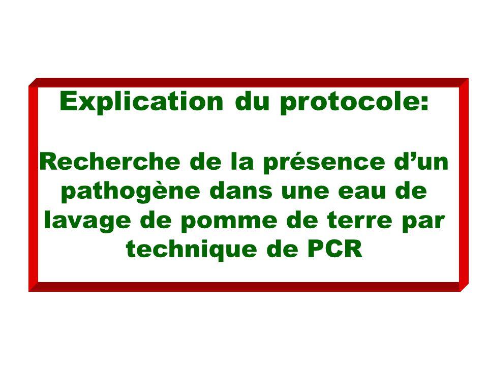 Explication du protocole: