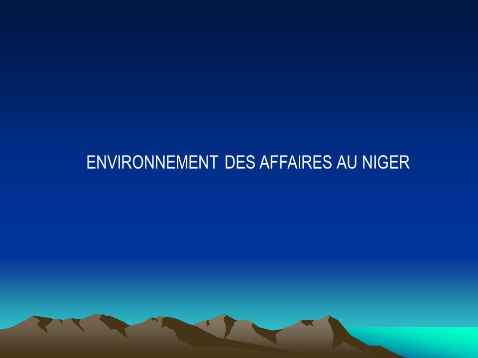 Chambre De Commerce DIndustrie Et DArtisanat Du Niger  Ppt Video