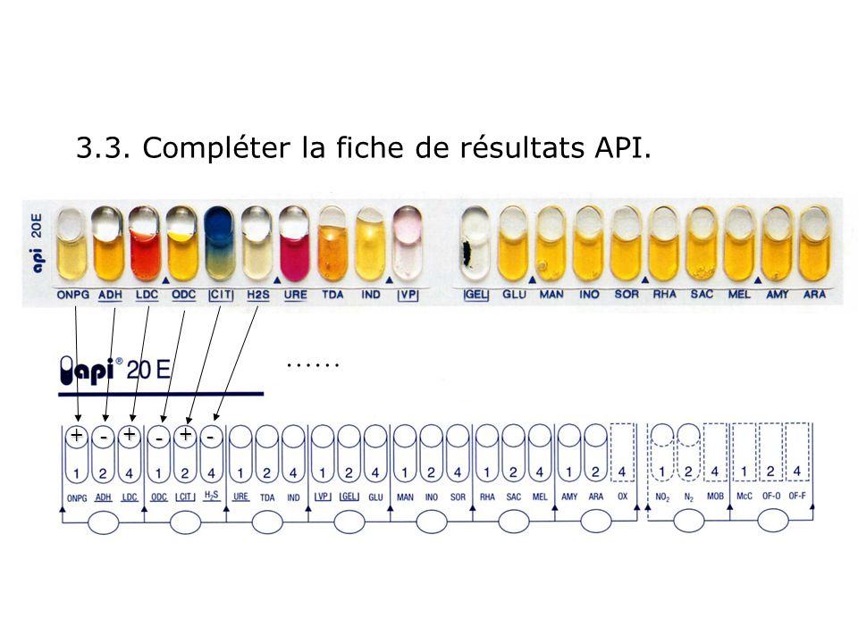 3.3. Compléter la fiche de résultats API.
