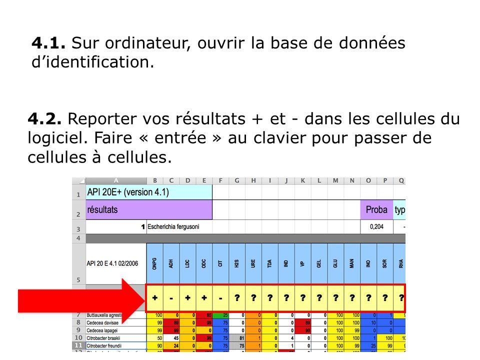 4.1. Sur ordinateur, ouvrir la base de données d'identification.