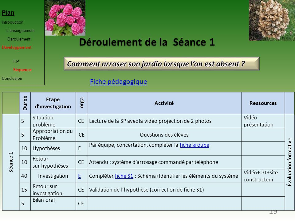 Soutenance orale du capet ppt t l charger - Comment faire cuire des betteraves rouges du jardin ...