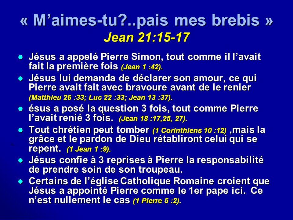 « M'aimes-tu ..pais mes brebis » Jean 21:15-17