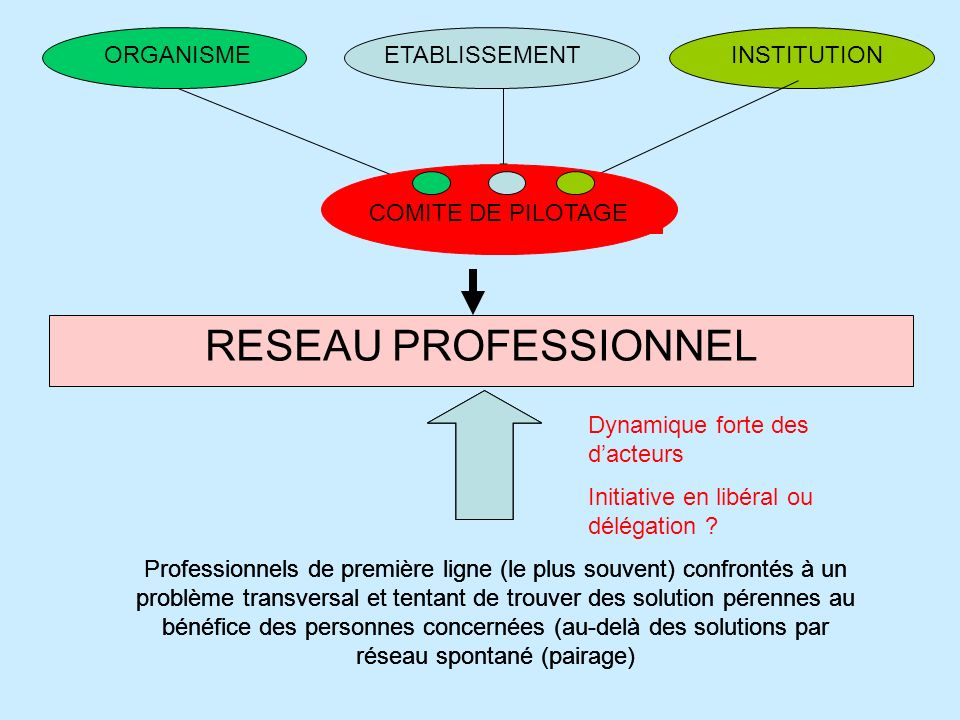 RESEAU PROFESSIONNEL ORGANISME ETABLISSEMENT INSTITUTION