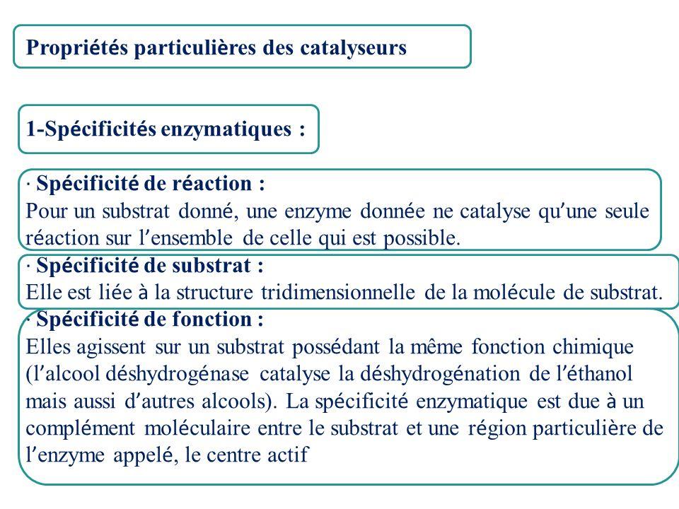 Propriétés particulières des catalyseurs