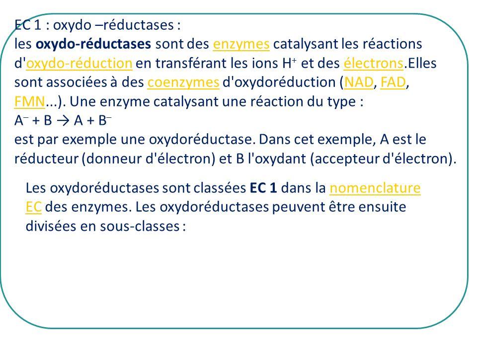 EC 1 : oxydo –réductases :