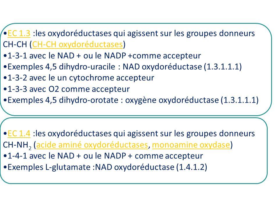 EC 1.3 :les oxydoréductases qui agissent sur les groupes donneurs