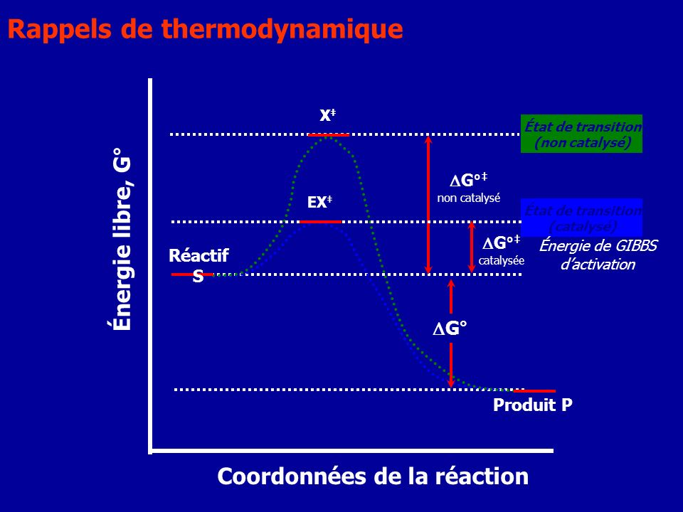 Énergie de GIBBS d'activation
