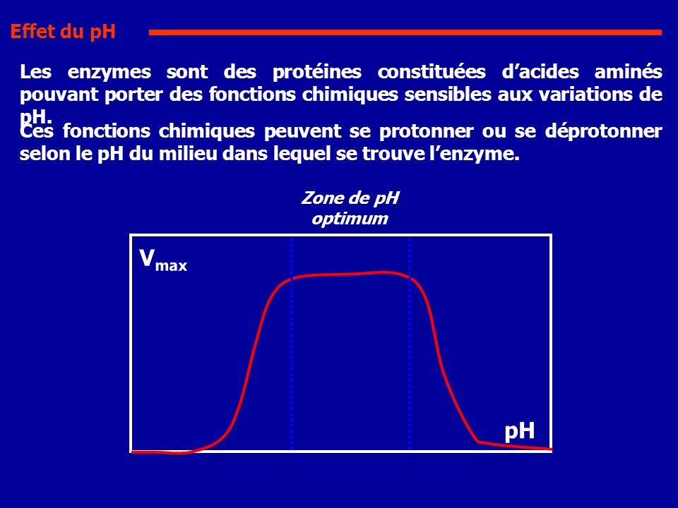 Effet du pH Les enzymes sont des protéines constituées d'acides aminés pouvant porter des fonctions chimiques sensibles aux variations de pH.