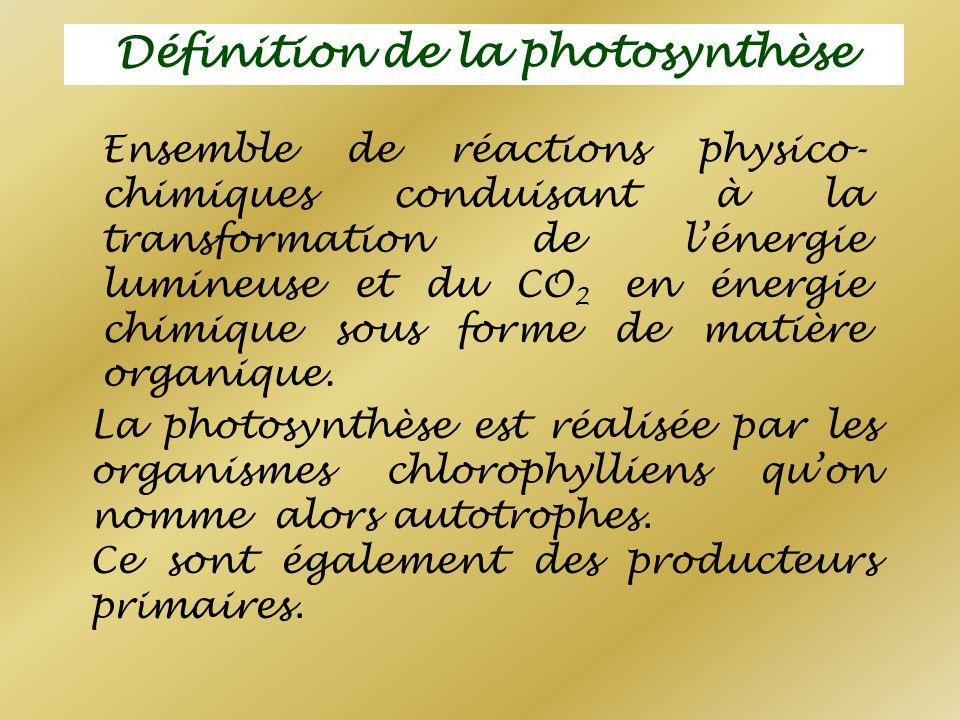 Définition de la photosynthèse