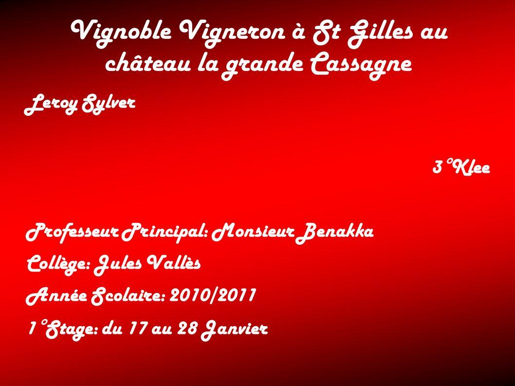 Vignoble Vigneron à St Gilles au château la grande Cassagne