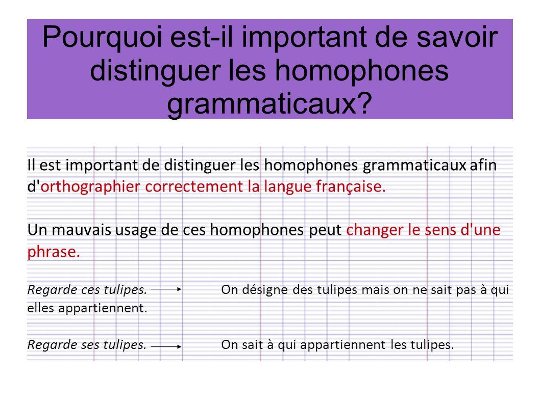 Pourquoi est-il important de savoir distinguer les homophones grammaticaux