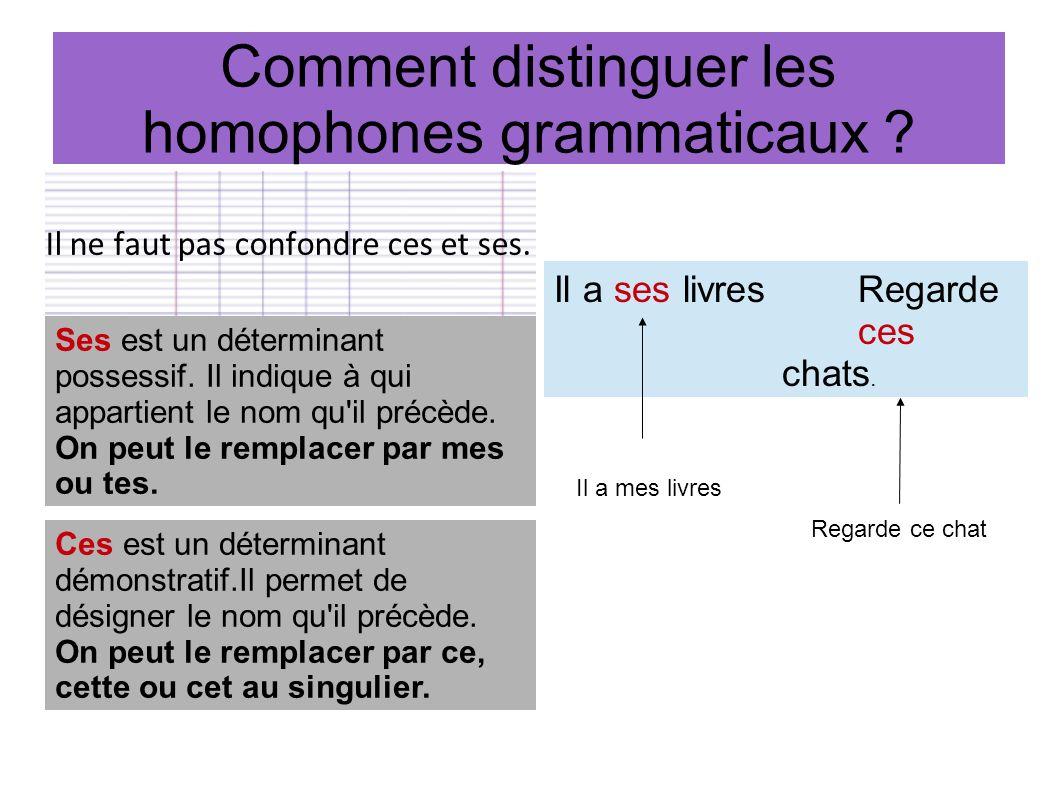 Comment distinguer les homophones grammaticaux