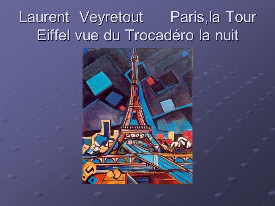 Laurent Veyretout Paris,la Tour Eiffel vue du Trocadéro la nuit