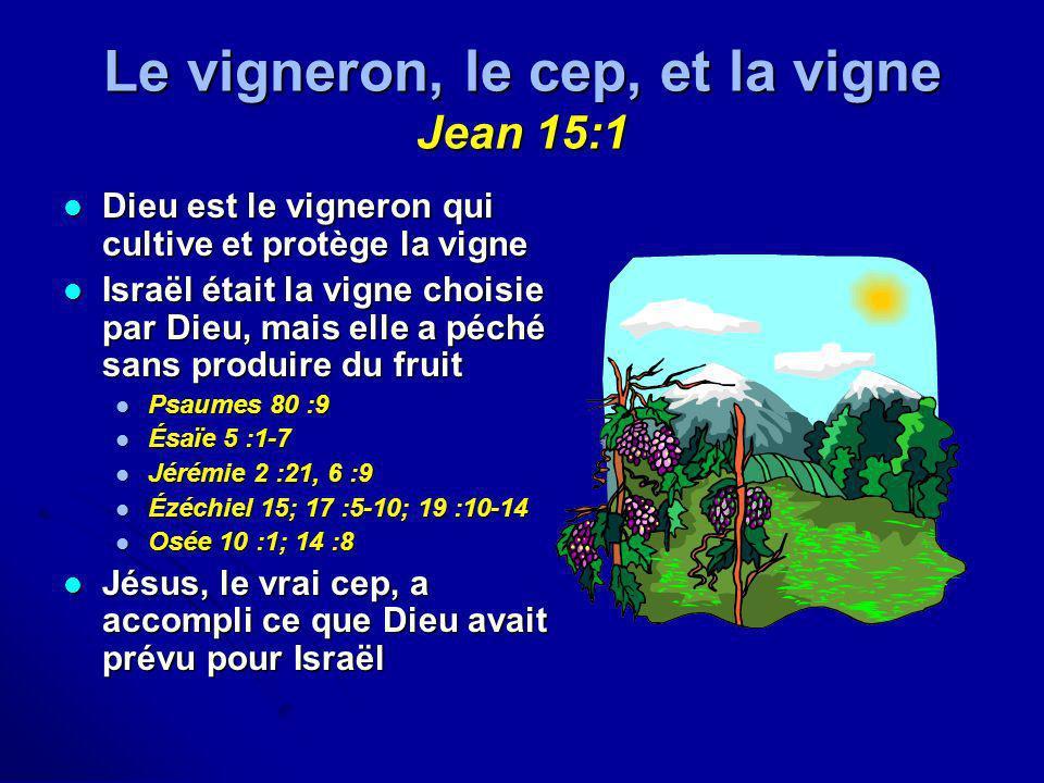 Le vigneron, le cep, et la vigne Jean 15:1