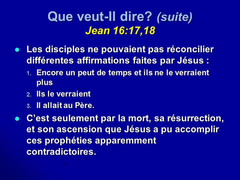 Que veut-Il dire (suite) Jean 16:17,18