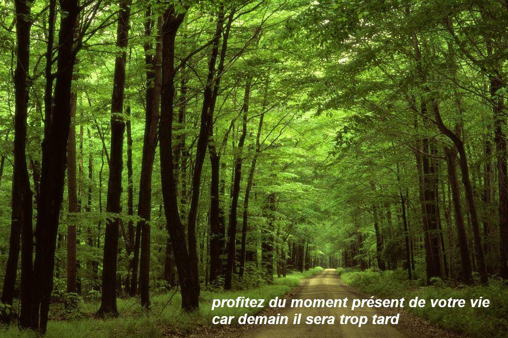 profitez du moment présent de votre vie