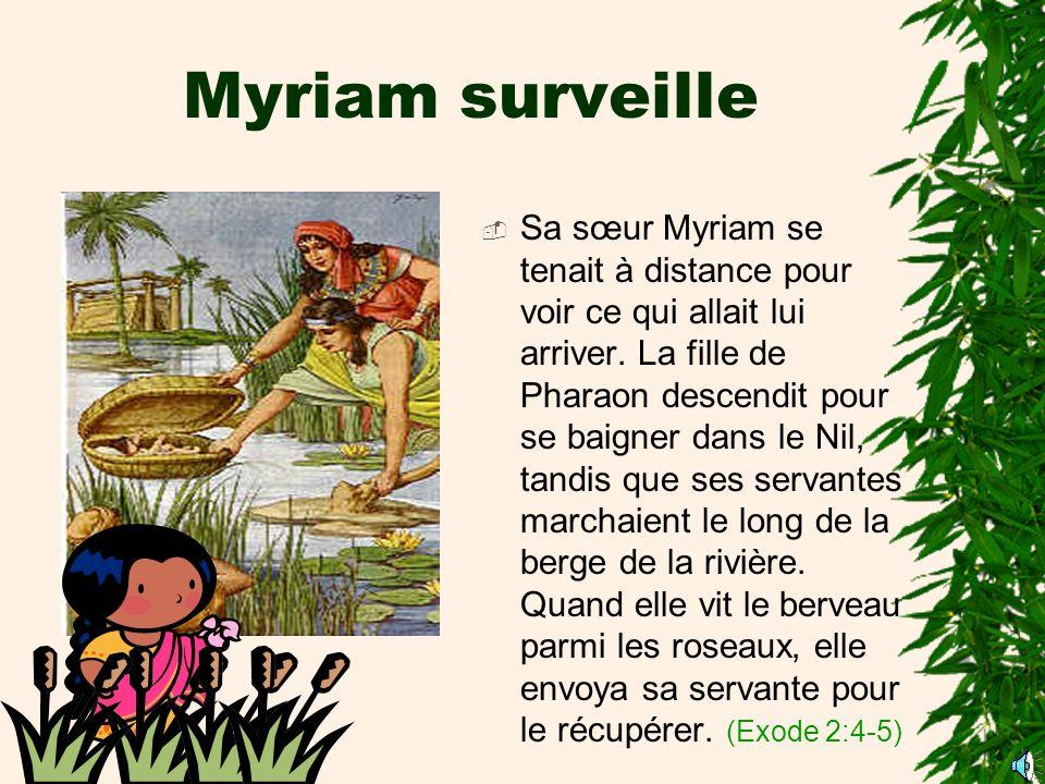 Myriam surveille