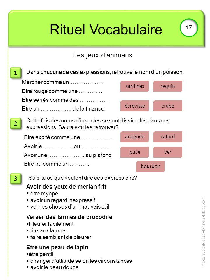 Rituel Vocabulaire Les jeux d'animaux 1 2 3