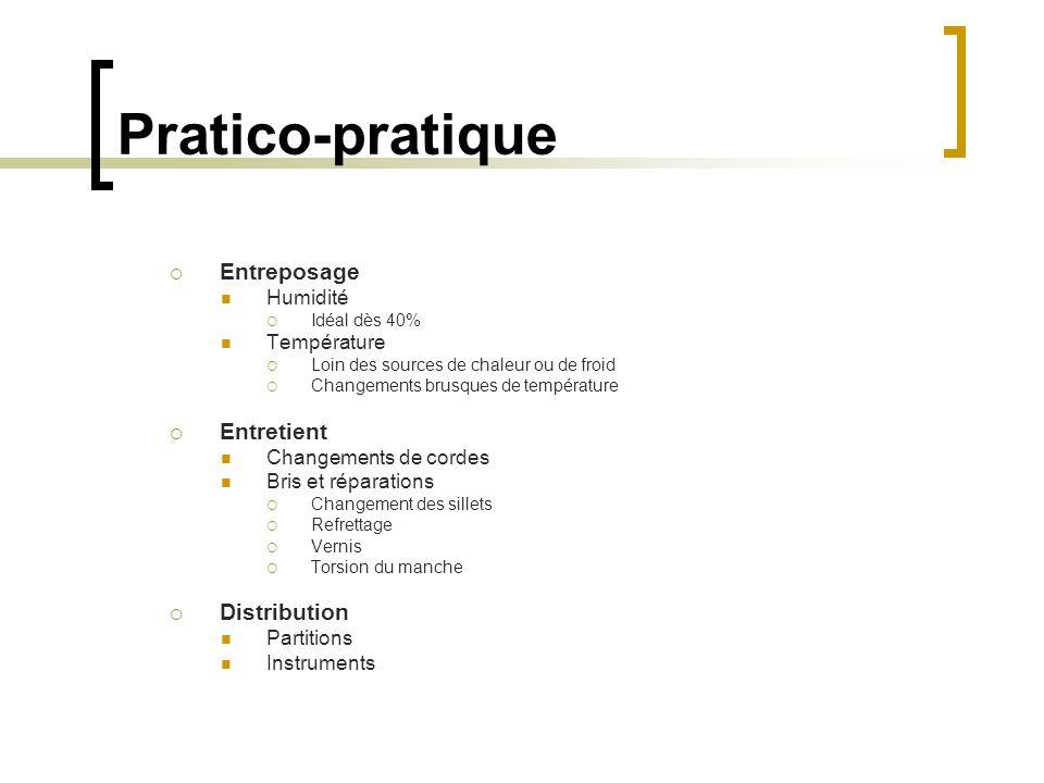 Pratico-pratique Entreposage Entretient Distribution Humidité