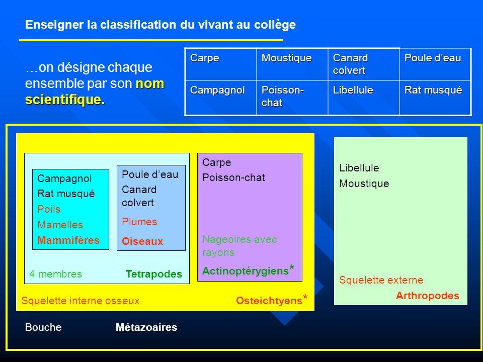 Enseigner la classification du vivant au collège