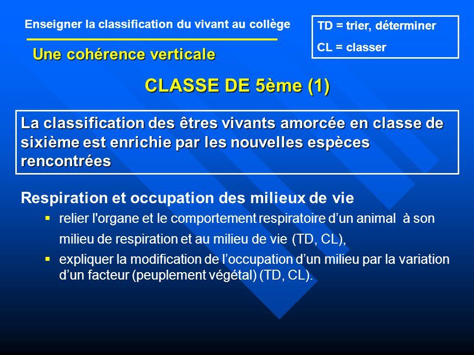 CLASSE DE 5ème (1) Une cohérence verticale