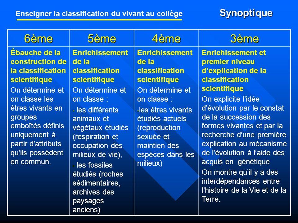 Enseigner la classification du vivant au collège Synoptique