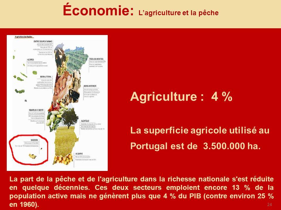 Économie: L'agriculture et la pêche