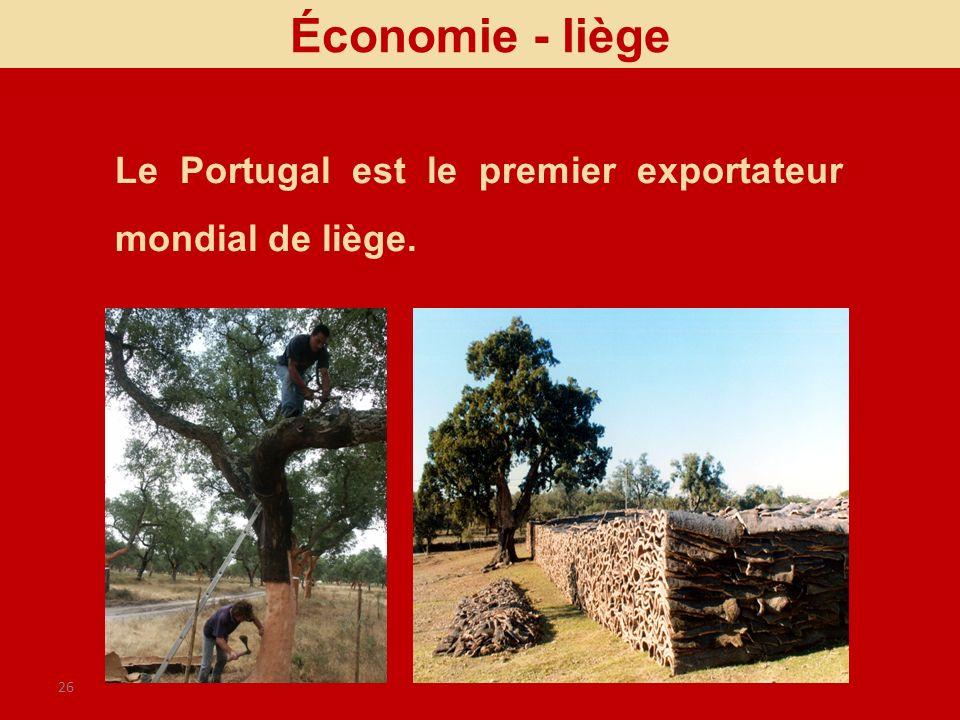 Économie - liège Le Portugal est le premier exportateur mondial de liège.