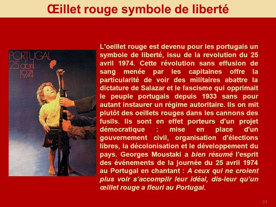 Œillet rouge symbole de liberté