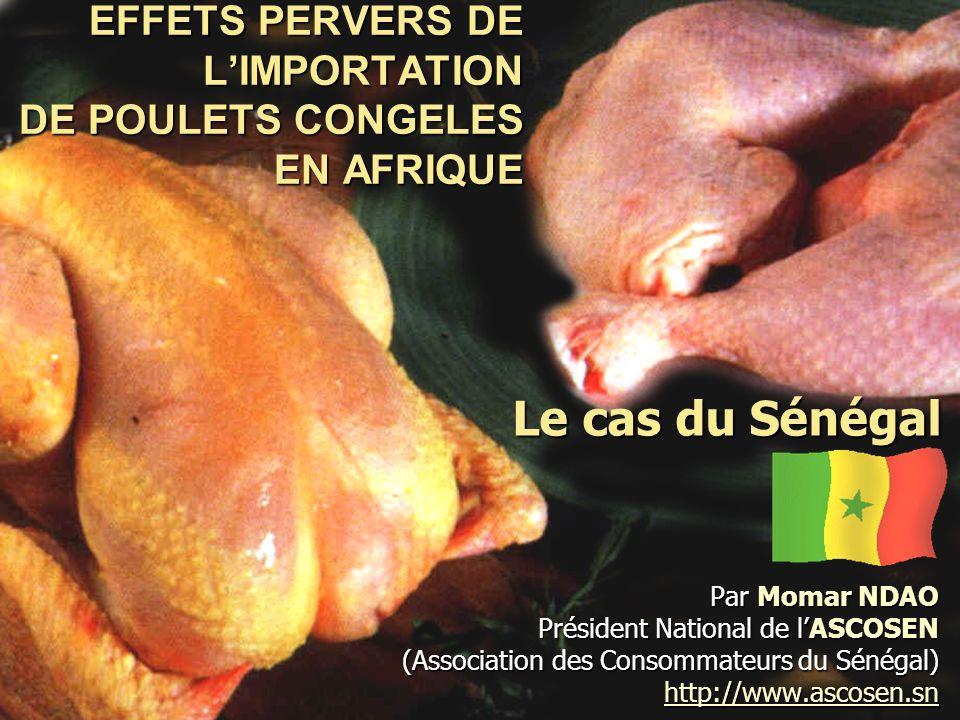 EFFETS PERVERS DE L'IMPORTATION DE POULETS CONGELES EN AFRIQUE