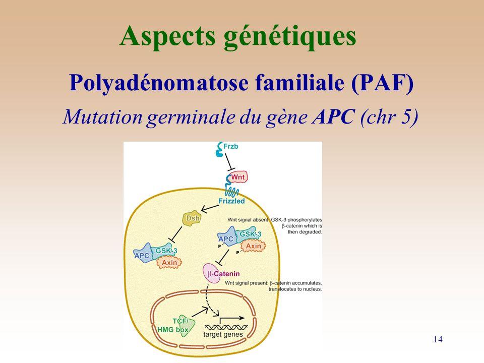 Aspects génétiques Polyadénomatose familiale (PAF)