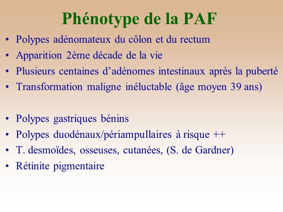 Phénotype de la PAF Polypes adénomateux du côlon et du rectum