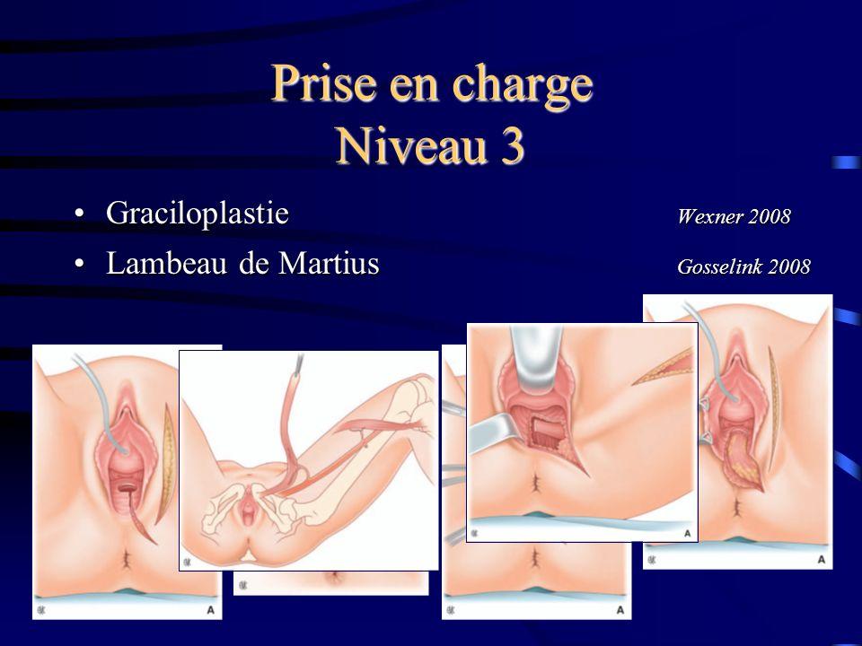 Prise en charge Niveau 3 Graciloplastie Wexner 2008
